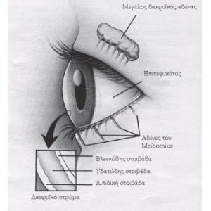 Βλεφαρίτιδα - Ξηροφθαλμία